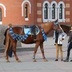 На улице можно увидеть лошадей. Желающие могут покататься на них.